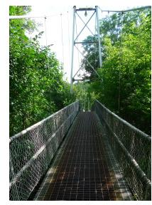 The Curran Suspension Bridge was built in 1939 for $3,000 and still accommodates foot traffic.