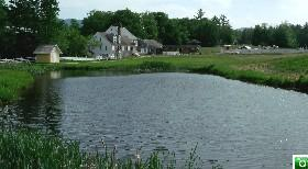 Remick Farm Fishing Pond - Click for a larger image!