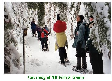Nh fish game offers outdoors woman winter workshop for Nh fish game