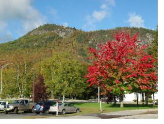 A fall view of Mount Forest (left).