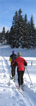 X-Country Sking and other winter sports can be quite healthy.